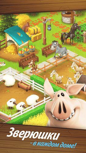 Hay Day-03